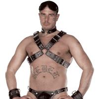 ledapol 8034 sm herre bryst sele læder - gay harness