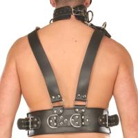 ledapol 8043 sm herre bryst sele læder - gay harness